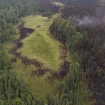 burned areas of wetland and forest