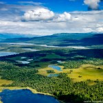 aerial view of lakes and forest in denali national park