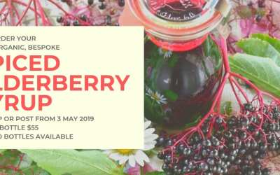 Spiced Elderberry Syrup Handmade by ME for YOU!