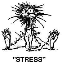 Stress (www.akeza.net)