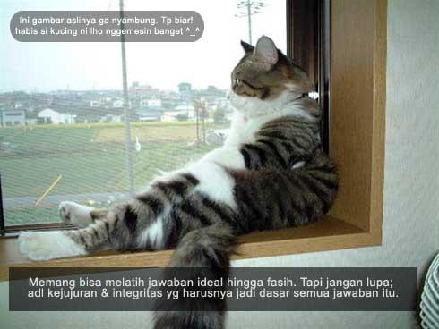 Pertanyaan ttg Keluarga & Pribadi pada Tes Wawancara Kerja - kucing gaya pol