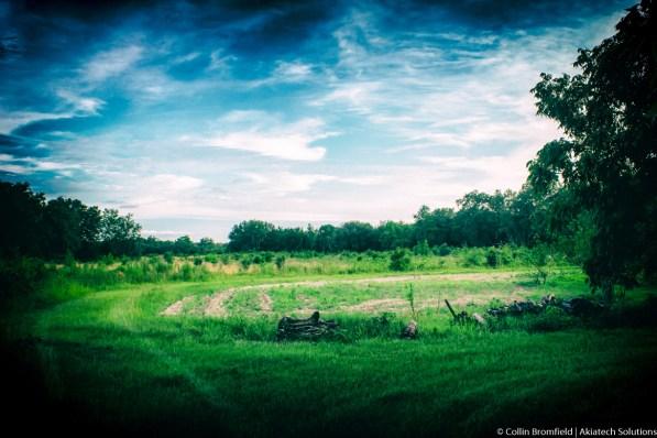 AKiA Landscape-38