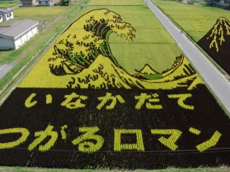 art-rice-06