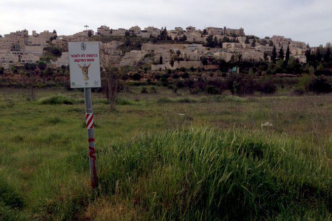 Gazellák völgye Jeruzsálemben