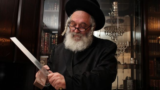 Egy rabbi hagyományos kóser vágáshoz használt kést élez