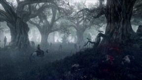 The Witcher 3: The Wild Hunt Galería 9