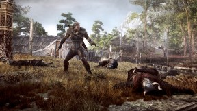 The Witcher 3: The Wild Hunt Galería 10