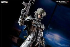raiden_W_caption_gecco_07