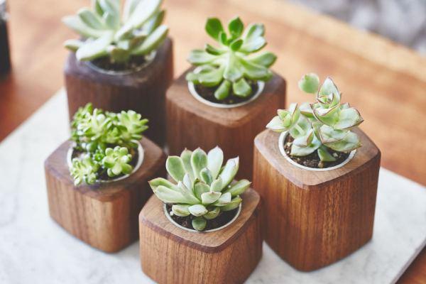 grovemade-walnut-desk-collection-planter-galb-D1_1200x1200_90