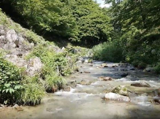 5SEC 295 (野底川,Nosoko River, Japan, August 2018)