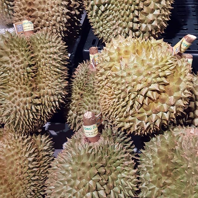 It's time.... #color #shape #Durian