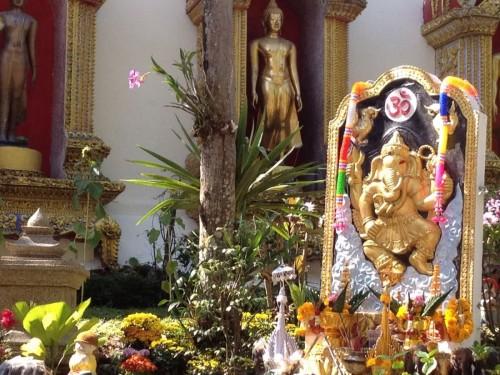 ChiangMaiZoo2011-19