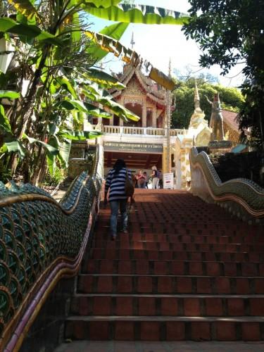 ChiangMaiZoo2011-7