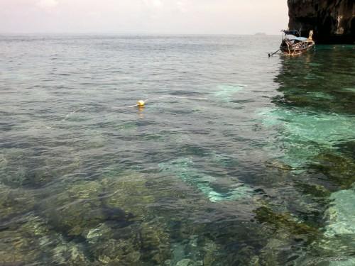 Phi Phi Islands2011-116