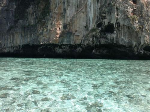 Phi Phi Islands2011-120