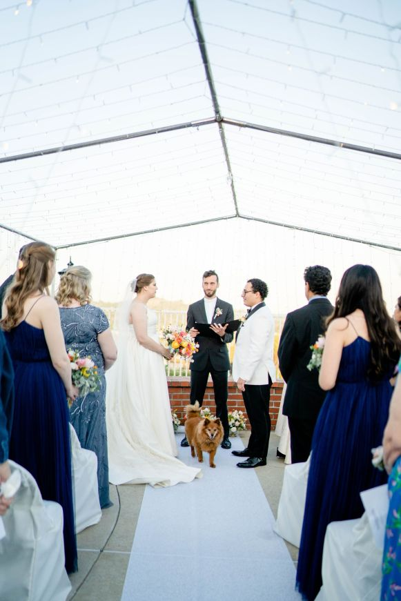 backyard wedding with dog