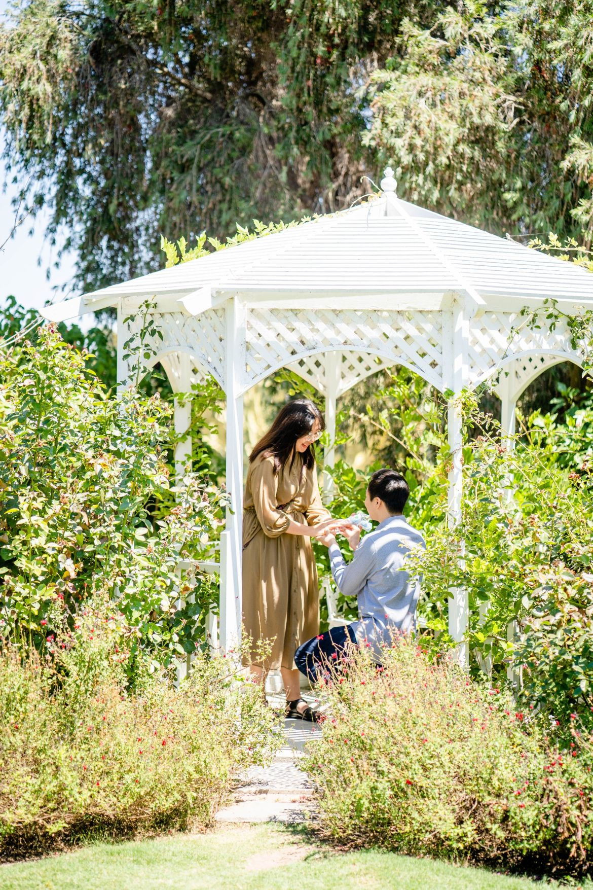 South Coast Botanical Garden Proposal Engagement
