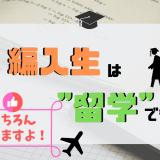 """「""""編入生""""×""""留学""""」アイキャッチ画像"""