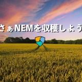 【実績公開】仮想通貨ネム(XEM)の委任ハーベストでNEMを増やす!