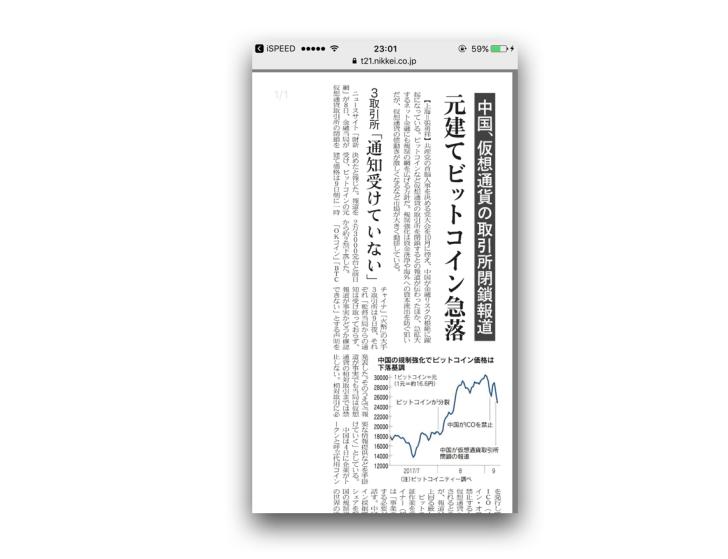 日本テレコンのPDF表示
