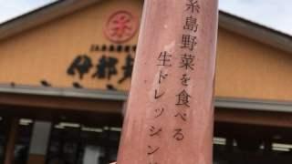 糸島正キの糸島野菜を食べる生ドレッシング「あまおう」