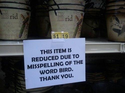 Birdじゃないよ、Bridだよ