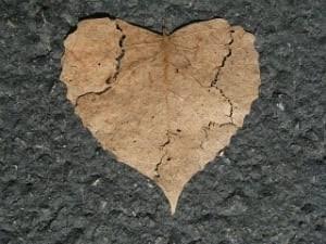 broken heart-shaped leaf