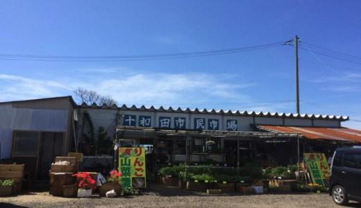 花や野菜の苗が豊富で安い!鹿角の十和田市民市場は穴場でした