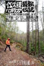 八ヶ岳アタック299