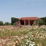 villa-marrakech-1369385478