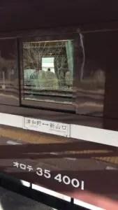 IMG 1049 169x300 - SL津和野稲成号グリーン車乗車記