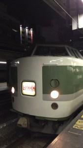 IMG 0329 169x300 - 今夏の旅行に便利な臨時列車は?東日本編①