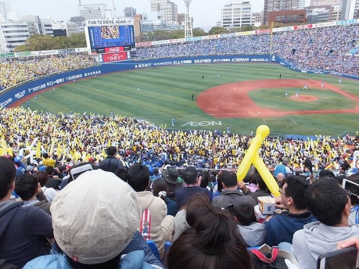 横浜スタジアムスターサイド側DB応援席:内野指定席Bからの景色眺め