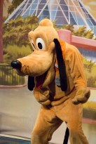 Pluto at the Epcot Character Spot