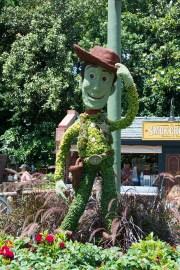 Woody topiary