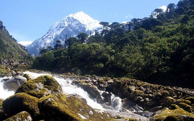 Image result for KHANGCHENDZONGA NATIONAL PARK