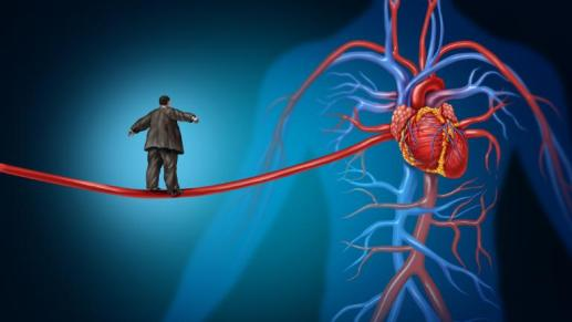 Heart muscle that is lost due to a heart attack cannot be replaced in adults.