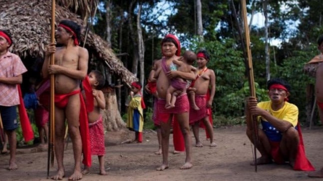 Brazil confirms first indigenous coronavirus case in Amazon rainforest