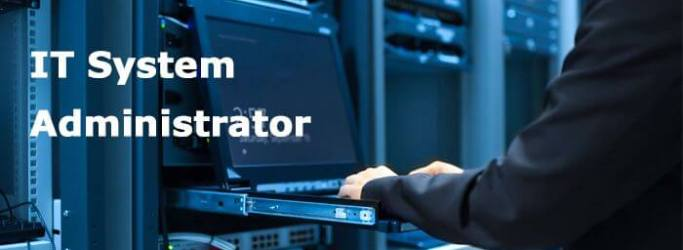 system administrator