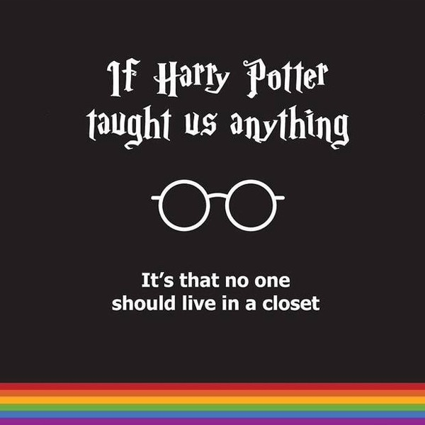 Image result for harry potter gay