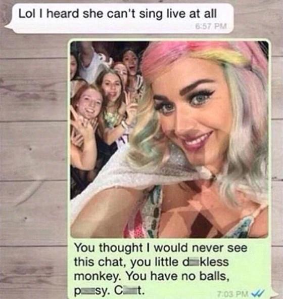 Did Katy Perry Send A Fan S Ex Boyfriend A Nasty Text E News