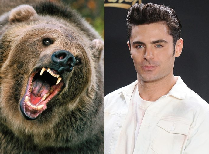 Zac Efron, Grizzly Bear