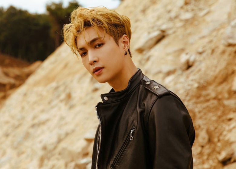 Image result for exo lay