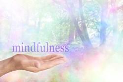 mindfulness žijemem tu a teraz