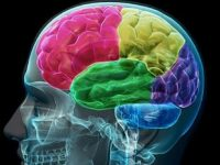 Pozitivna psihologija: Tehnike razmišljanja kroz primjere iz Kur'ana