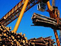 Postignut dogovor: Stop izvozu trupaca, vlade uvode takse