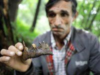 Ramiz Nukić 14 godina sakuplja kosti: pronađeni novi ostaci ubijenih Srebreničana