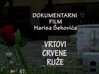 Film o ljepotama bosanskih mahalskih džamija