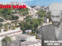 Priča o Zaimu ef. Puški: Hafiz na Golom otoku