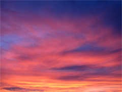 Cotten Candy Sunset January 2012 #one Available